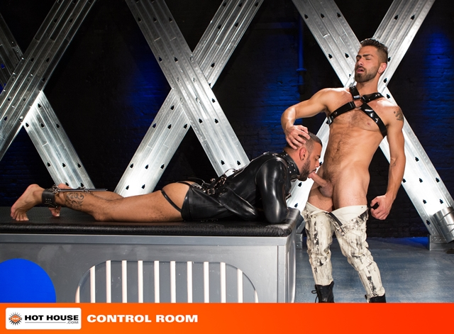Hothouse-cocks-Tony-Orion-Tommy-Defendi-Adam-Ramzi-fucking-shoots-spray-thick-white-cum-chiseled-abs-001-male-tube-red-tube-gallery-photo