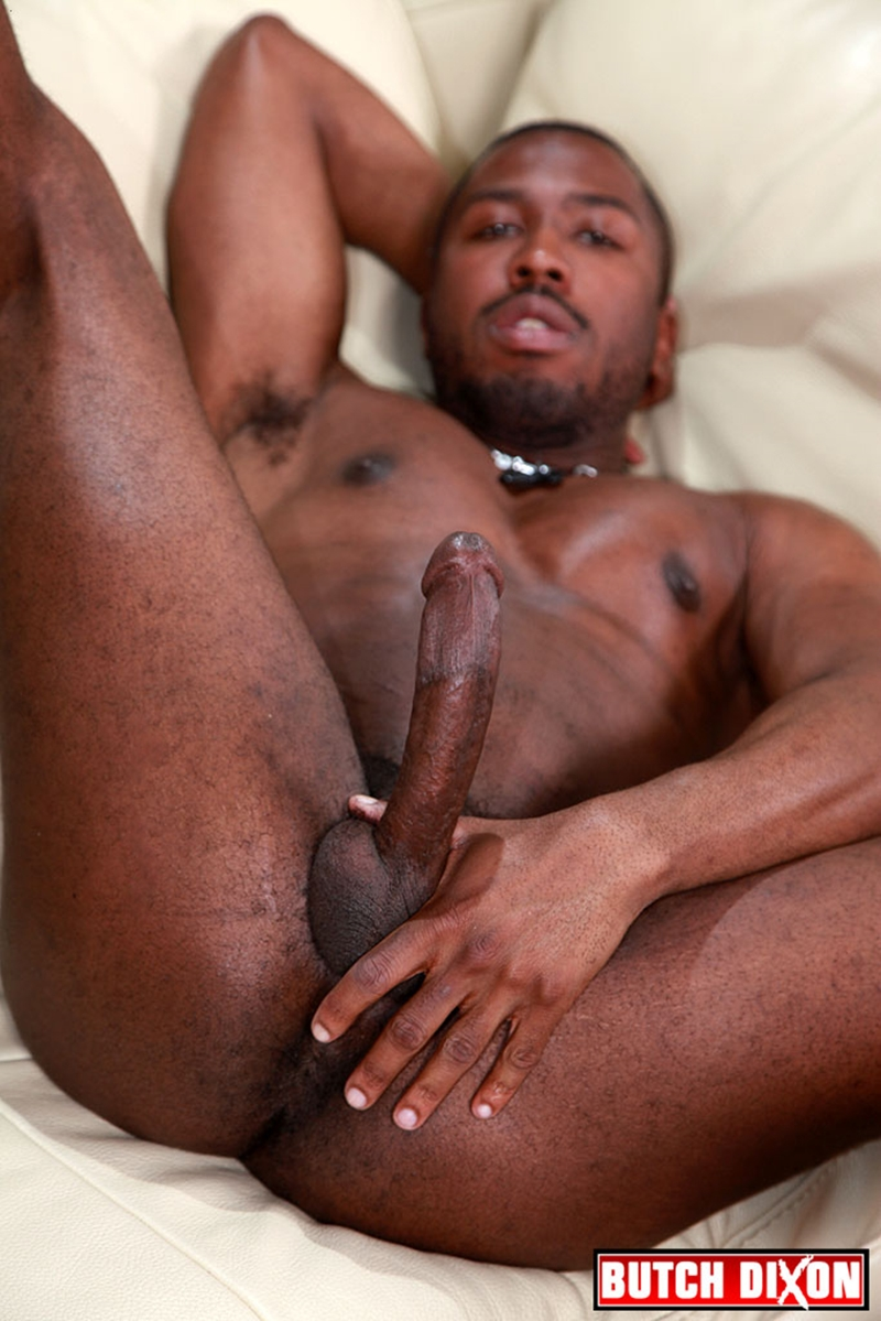 sexy black gay porn videos bbw mistress kerosene   houseman