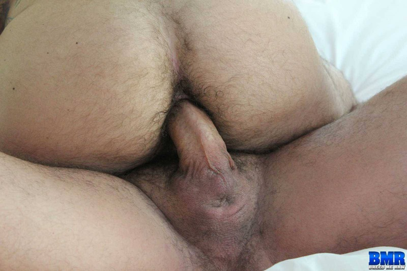 hairy ass fuck