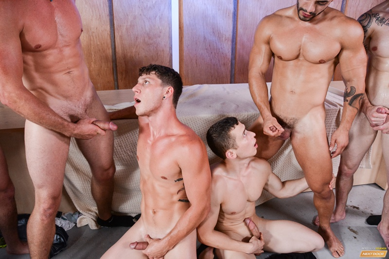 Gay Orgy Torrent