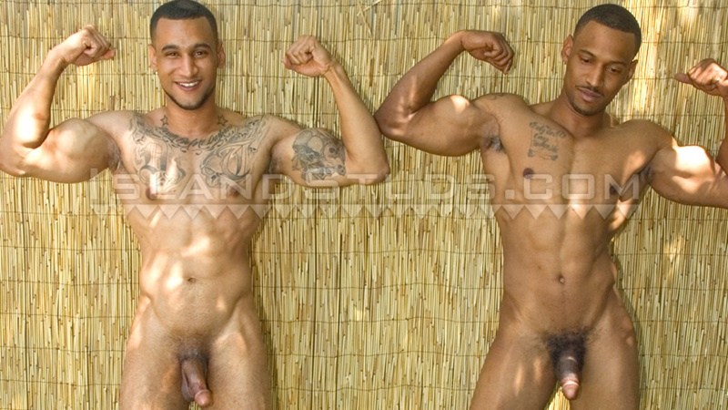 Think, Naked black brothers pics opinion