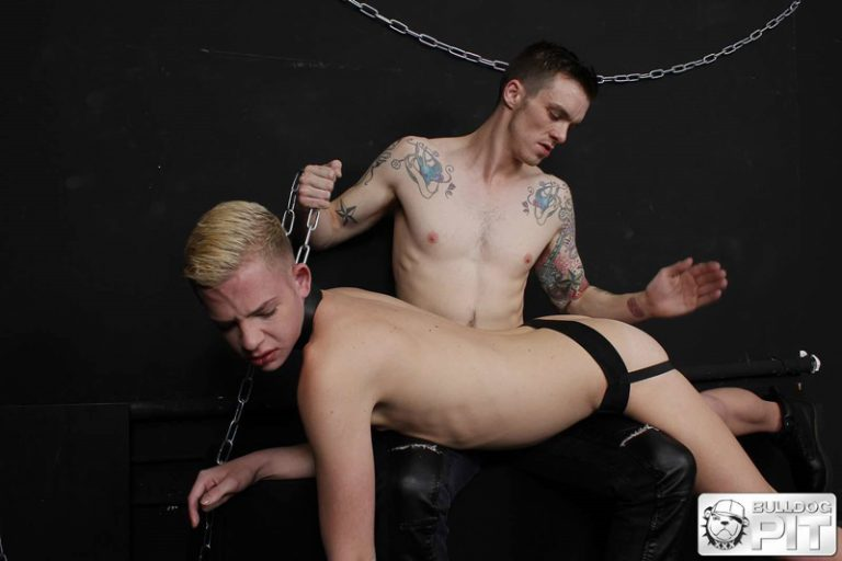Bulldog Pit Alex Silvers' boy hole is open enough for AJ Alexander's huge dick