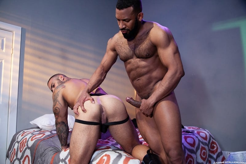 Men for Men Blog Jay-Landford-Lorenzo-Flexx-bareback-fucking-big-black-cock-muscle-ass-hole-RagingStallion-010-gay-porn-pictures-gallery Jay Landford takes ownership of Lorenzo Flexx's hole with passionate kisses and long driving thrusts of his raw glistening cock Raging Stallion